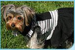 Dog Gift Dog Blanket Doggy Clothes