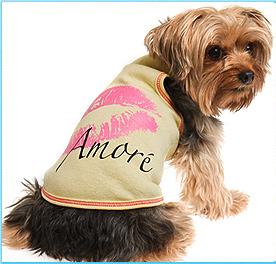 Stylish Clothing For Dogs Dog Clothing