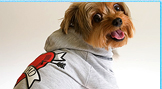 Pet Outfits Fashionable Ruffluv Clothing For Dogs