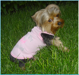 New York Dog Clothing New York Dog Clothes Dog Tshirt