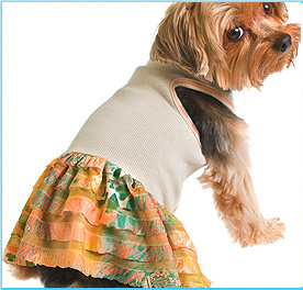 Fashionable Dog Clothes Small Dog Clothes New York Pet Clothes