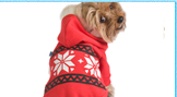 Fashionable Dog Clothes Dog Tshirt Dog Clothing
