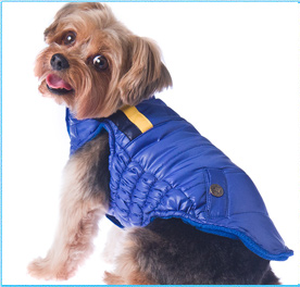 Dog Clothes Dog Clothing New York Dog Clothes